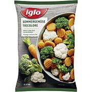 Tk-Sommergemüse Tricolore 2,5 kg