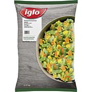 Tk-Gemüsemischung Europa 2,5 kg