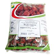 Bio TK-Erdbeeren 2,5 kg